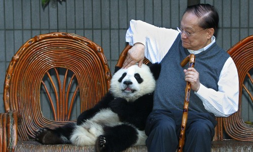 Chinese swordsmen novel writer Jin Yong poses with a giant panda cub at the Chengdu.