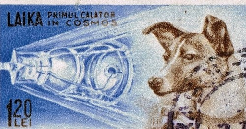 1959 Romanian Stamp commemorating Laika, the Russian cosmonaut.