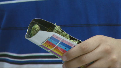 cu pot study 10pkg transfer frame 1290 CannaVan Takes To The Streets To Study Pot & Health Effects