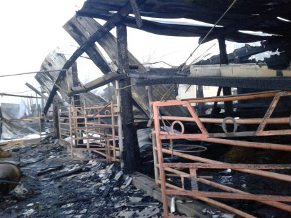 sheridan barn fires 9 west metro fire tweet 6 Horses Killed In Suspicious Early Morning Barn Fire