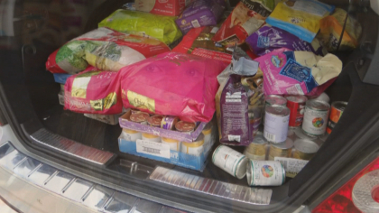 animal shelter donation 10pkg frame 1766 Girls Collect Donations To Help Feed Dogs, Cats At Animal Shelter