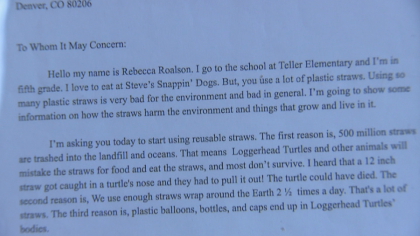 hot dogs straws turtles 5pkg frame 660 How 5th Graders Got A Restaurant Owner To Make A Big Change