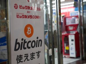 Amateur Crypto Investors Caused the Burst, Japanese Expert Says