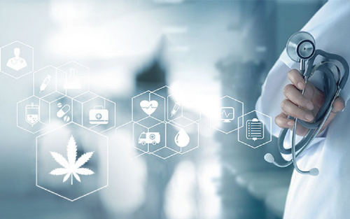High Return? CannabisCare CopyPortfolio Offered By eToro