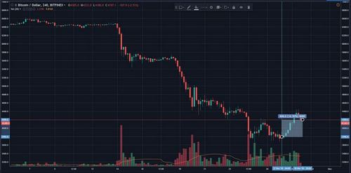 """Bitcoin (BTC) Surges Above $4000, Analyst Cries """"Dead Cat Bounce"""""""