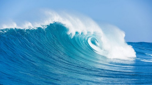 Forrester issues first Wave report on Experience Optimization