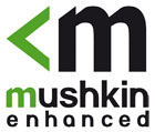 Mushkin Source 500 GB Review