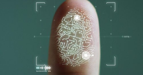 Ripple Invests in Biometric Cybersecurity Startup's $2. 2 Million About